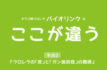 ☆クロレラの『皮』と『ガン抵抗性』の関係!