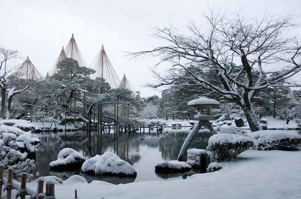 兼六園の雪2