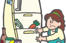 冷蔵庫のダイエット